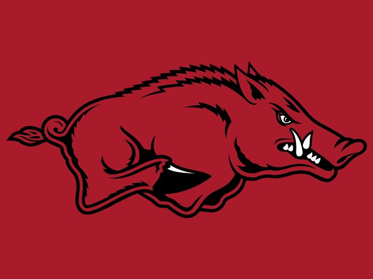 Arkansas Razorbacks!!!  WOOOO PIIIGGGG SOOIIEEE!!!!!!!!!!!!!!!