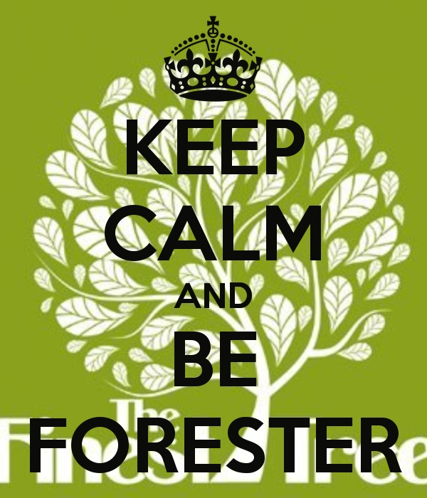 KEEP CALM AND BE FORESTER