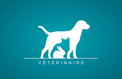 LOGO vétérinaire by Caroline Remy, Nice use of negative space