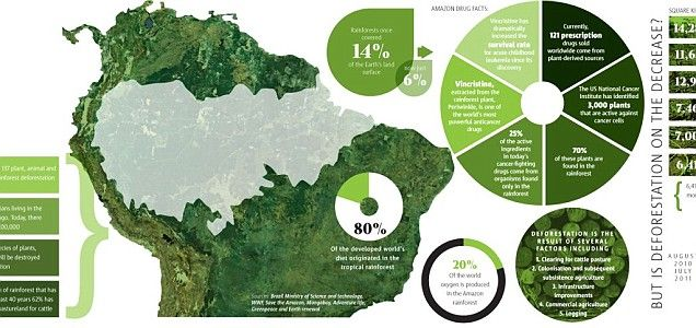 the major threats of tropical forests essay Essay threats to intact tropical peatlands and  aquatic and terrestrial biodiversity is a major conservation  clearings on tropical forests.