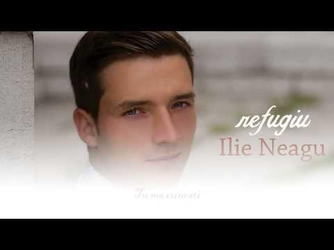 Promo Album Refugiu - Ilie Neagu