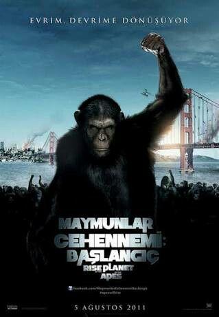Maymunlar Cehennemi: Başlangıç (2011) #film