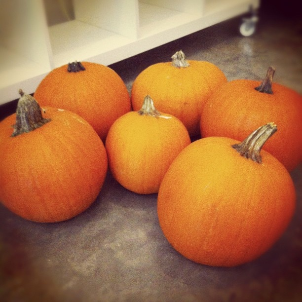 The parents were out of town so we had a pumpkin party. #halloween