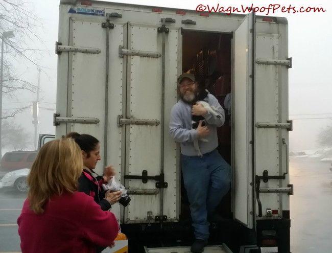 Questioning Pet Vaccinations (Part 5A - Non-core Vaccines)
