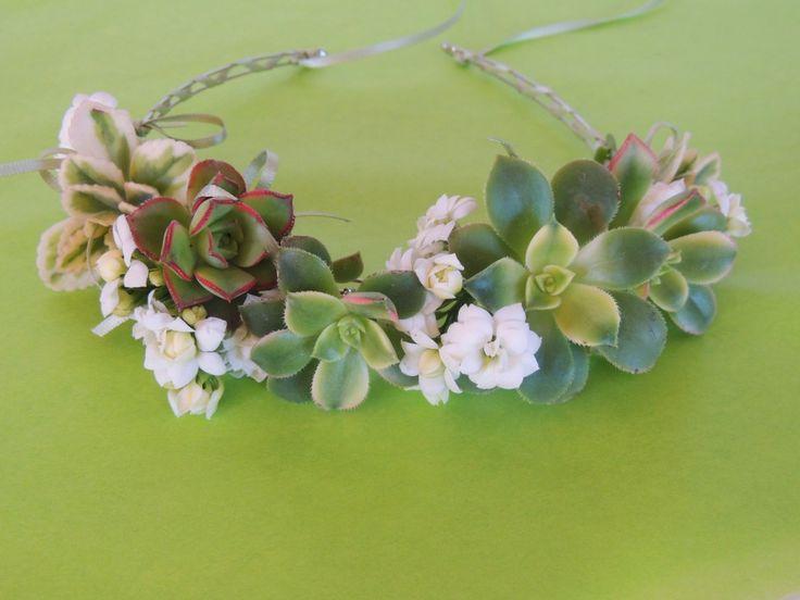 succulent-crown-0207-e1458677842452.jpg (972×729)