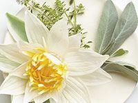 Tyyni Timjami (Yrttimetsä) Luo rauhoittavaa tunnelmaa ja harmoniaa. Valkoinen salvia ja timjami yhdistyvät lootuksenkukan, santelipuun ja myskin tuoksuihin.
