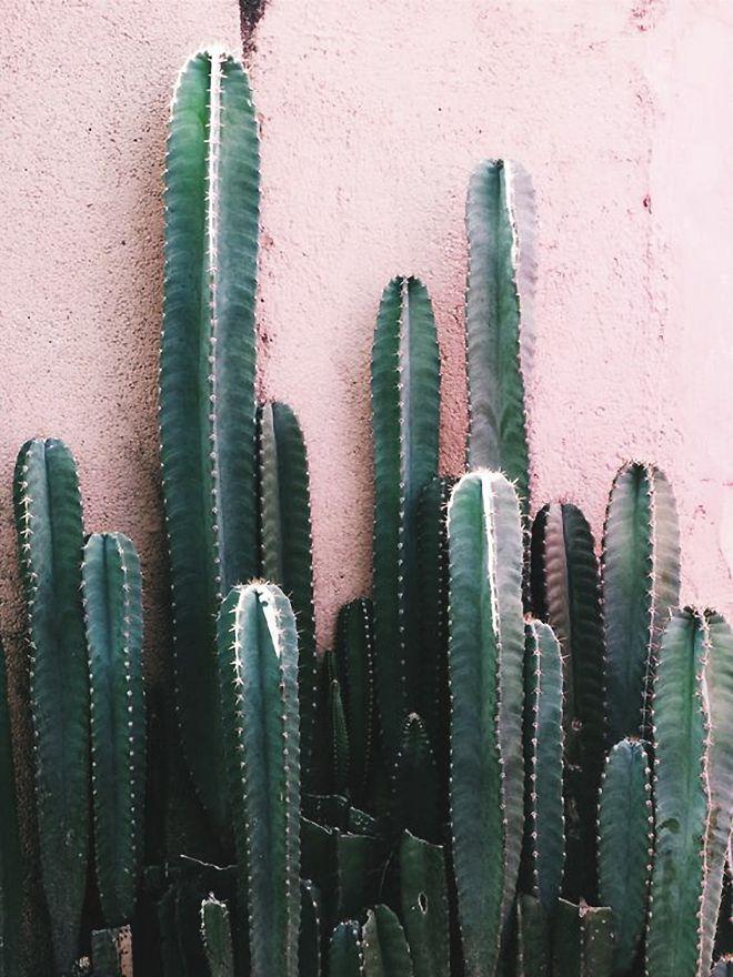 TEXTURAS QUE ME ENAMORAN | Harmony and design - A Lifestyle Blog