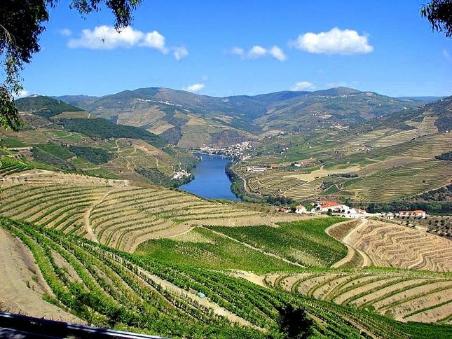 Top 25 Attractions & Things To Do In Portugal - via Open Travel | Portugal has everything you need plus a bunch of things to surprise you. The emerald waters of Algarve, the red-tiled roofs of Madeira, the soothing whiteness of Belem and the luscious greenness of the Azores are all for the taking. And so is the tranquility Alentejo's sleepy fishing villages, the rambling of trams in the narrow, ascending streets of Lisbon... Photo: Douro River Valley