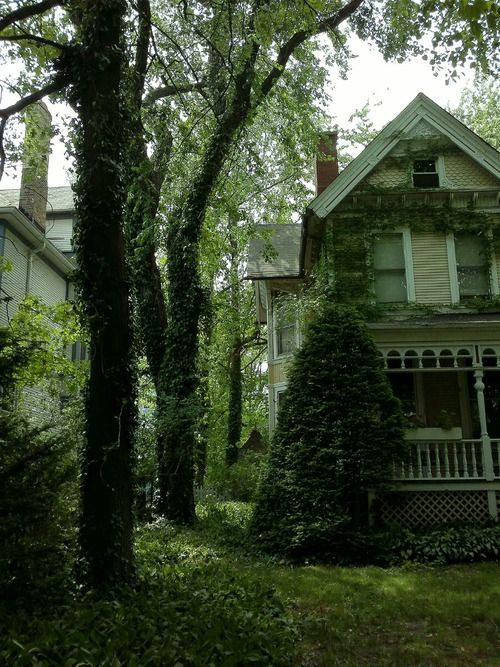 Overgrown Victorian, Portland, Oregon photo via madi