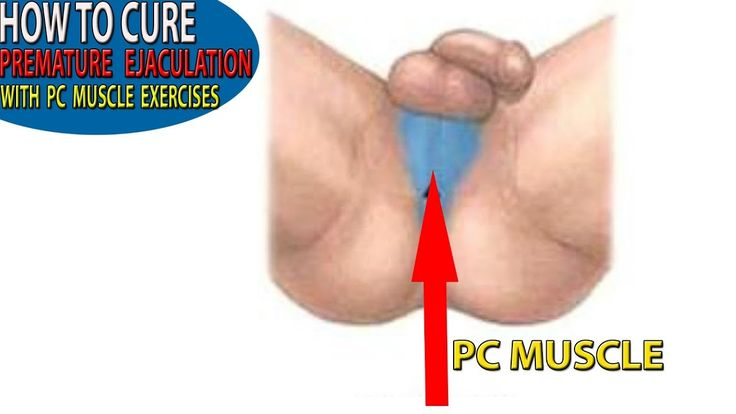 PC Muscle Exercises For Men - How to Cure Premature Ejaculation Health S...