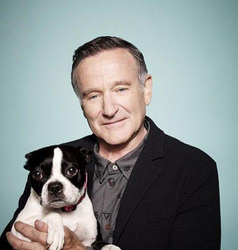 RIP Robin Williams, retrouvé mort hier à son domicile suite à un suicide.  Un superbe acteur, ami des animaux ... Il posait ici avec sa chienne Verna Pearl qui est décédée il y a 11 mois. Il l'avait adoptée en refuge et faisait la promotion de l'adoption en lui rendant un bel hommage.