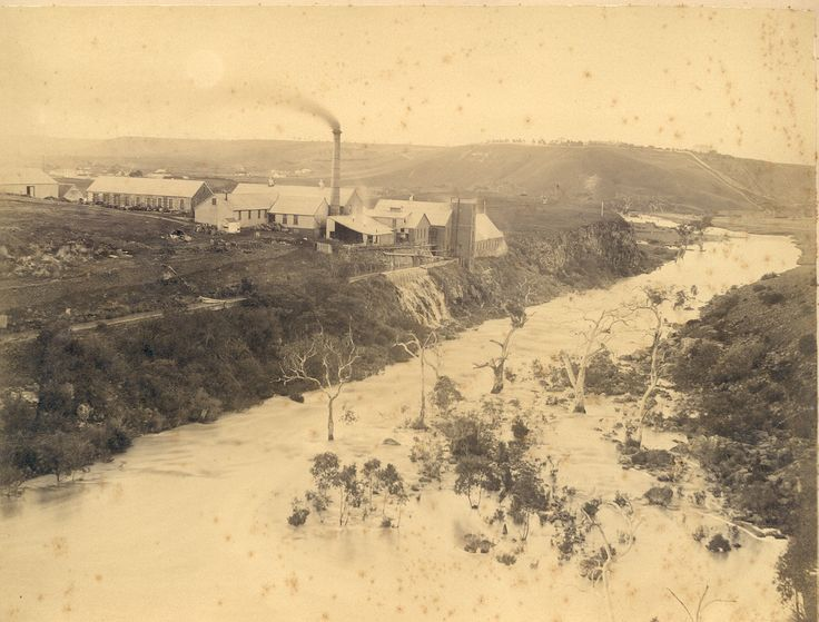 The Australian Paper Mill at Fyansford where Ada GOULD nee BAILEY lost her right hand in a work accident in 1907.