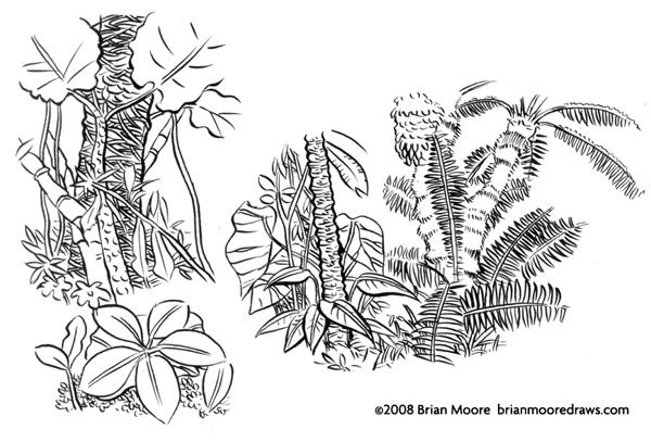 15 Awesome jungle plants drawing images | Plant drawing ...