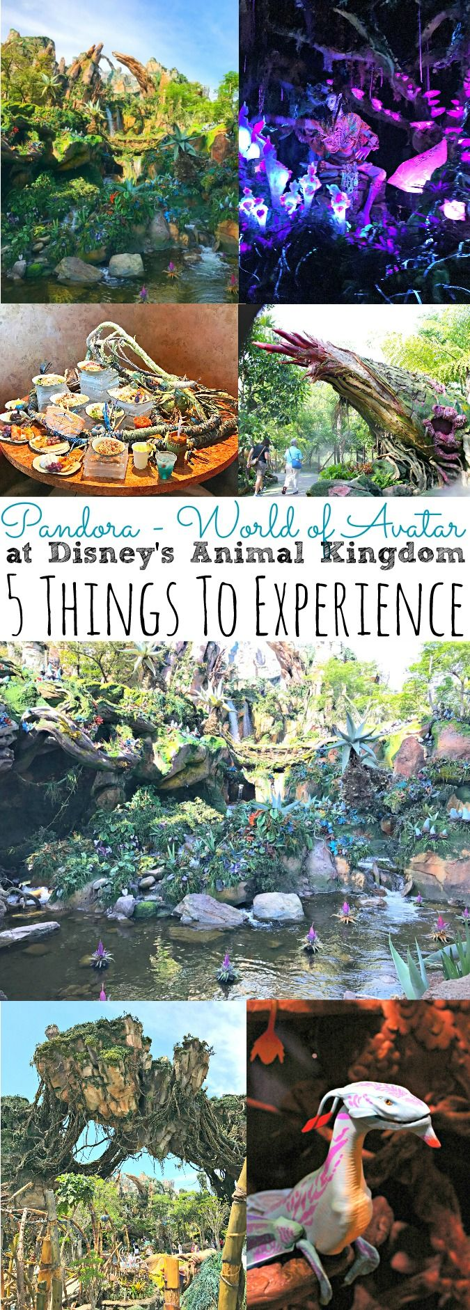 Pandora World of Avatar at Disney's Animal Kingdom | 5 Things To Experience - abccreativelearning.com