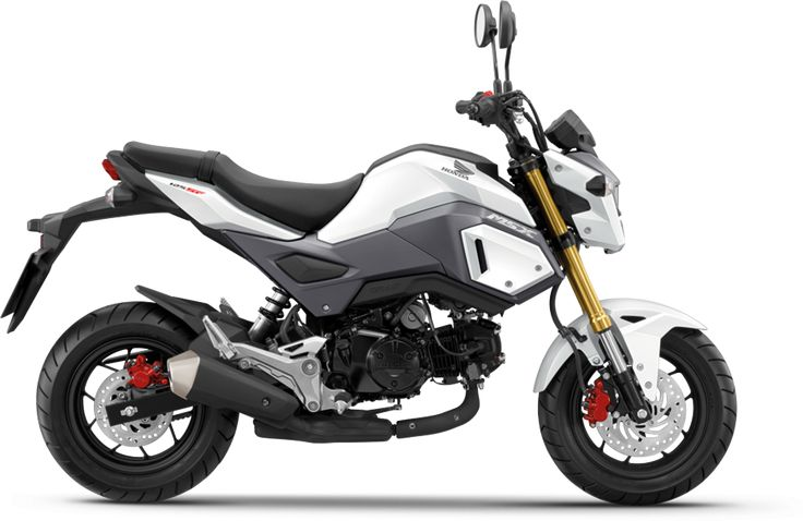 Honda MSX125 freestanding on white background