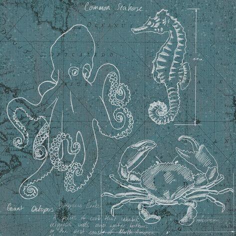 Coastal Blueprint II Kunst van Marco Fabiano bij AllPosters.nl