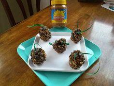 2nd Gen Allergy Mom, Allergy Superheroes: Peanut Free Pinecone Bird Feeders!