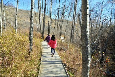 3 Family Hikes in NW Calgary : Play Outside Guide