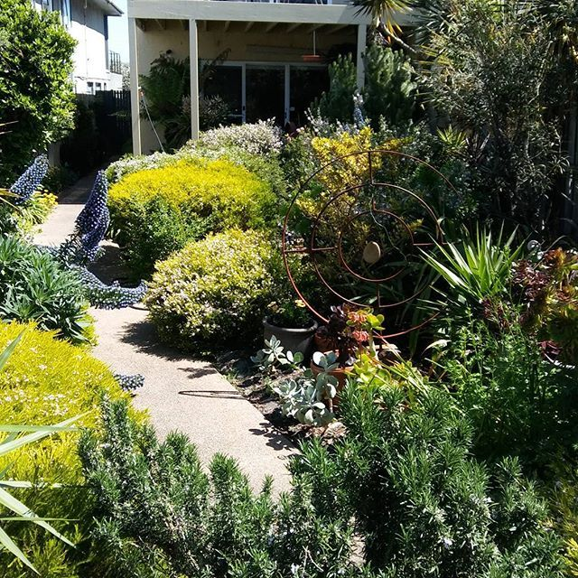 #carrumbeach #gardenlover #spring #beach house#Melbourne #artiststudio #australia