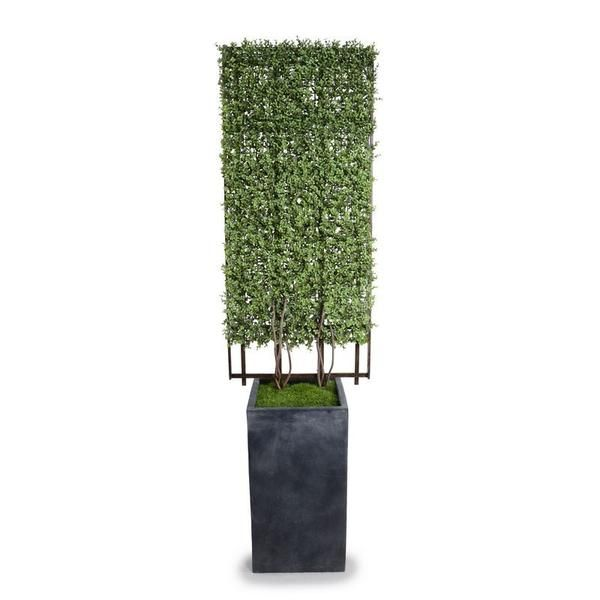 "Designed for indoor or outdoor use, this UV-stable product is composed of a realistic Boxwood trellis in a large column pot planted with faux grass. The 78"" tall rectangular trellis has a thick covering of lifelike Boxwood reproduction extending from two thick branches at the bottom. The trellis is secured in a 30"" high, weighted fiberglass column pot with a lead finish. The artificial grass filling the column pot opening has a realistic thatch and lifelike color variation. All of o..."