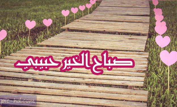 صور صباح الخير حبيبي صور مكتوب عليها صباح الخير حبيبي Good Morning My Love Love Photos Arabic Love Quotes
