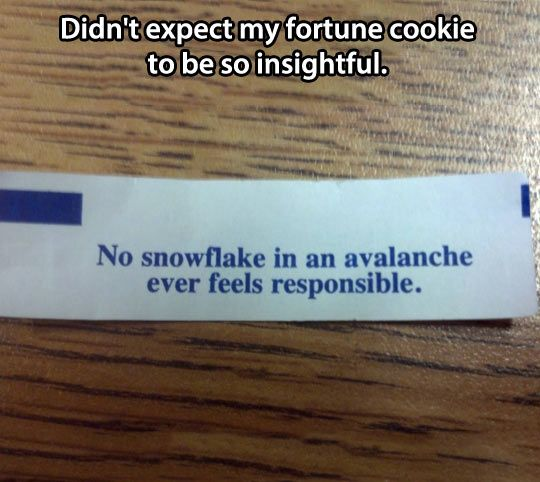 Didn't expect my fortune cookie to be so insightful: no snowflake in an avalanche ever feels responsible.