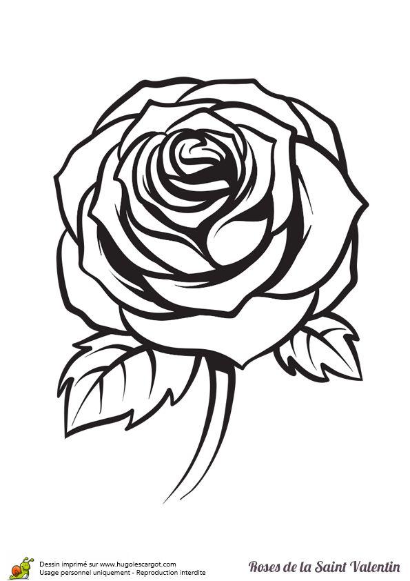 Les 131 meilleures images du tableau coloriages pour les - Coloriage d une rose ...