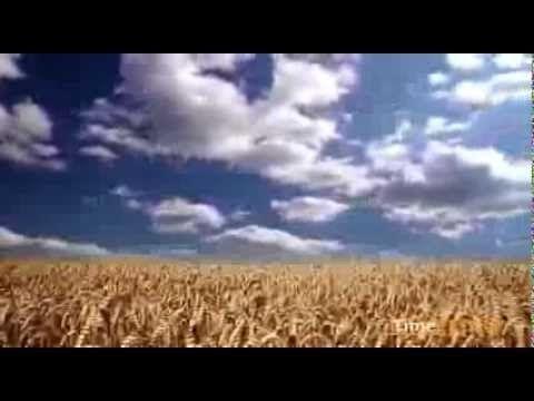 Украина. Чудесная страна. Великое наследие планеты. Украина. Трейлер. Цикл документальных фильмов «Великое наследие планеты. Украина» покажет страну такой, какой ее еще никто не видел прежде.  Съемки фильма будут происходить в течении года - весной, летом, осенью, зимой. Съемочная группа побывает во всех регионах Украины. Зритель увидит Украину с высоты птичьего полета, подымится высоко в горы, опустится глубоко в пещеры, погрузится на дно Черного моря.  Для съемок используются цифровые…