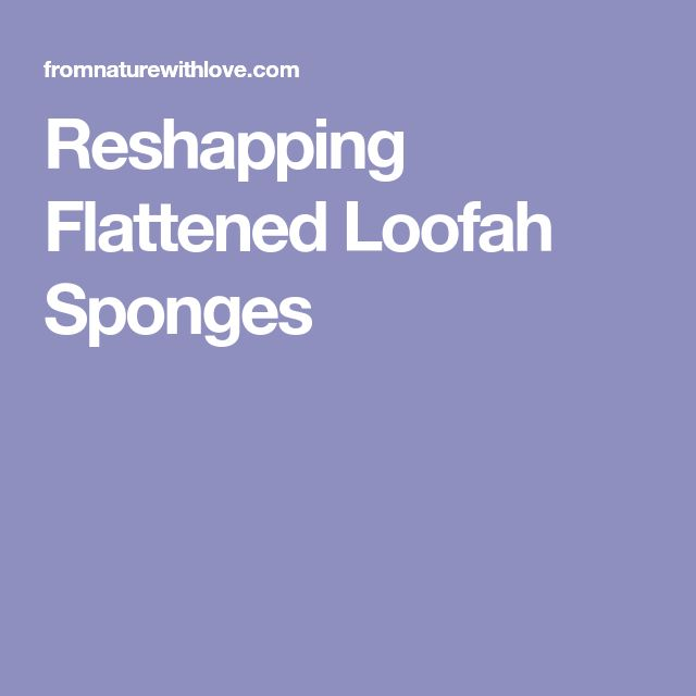 Reshapping Flattened Loofah Sponges