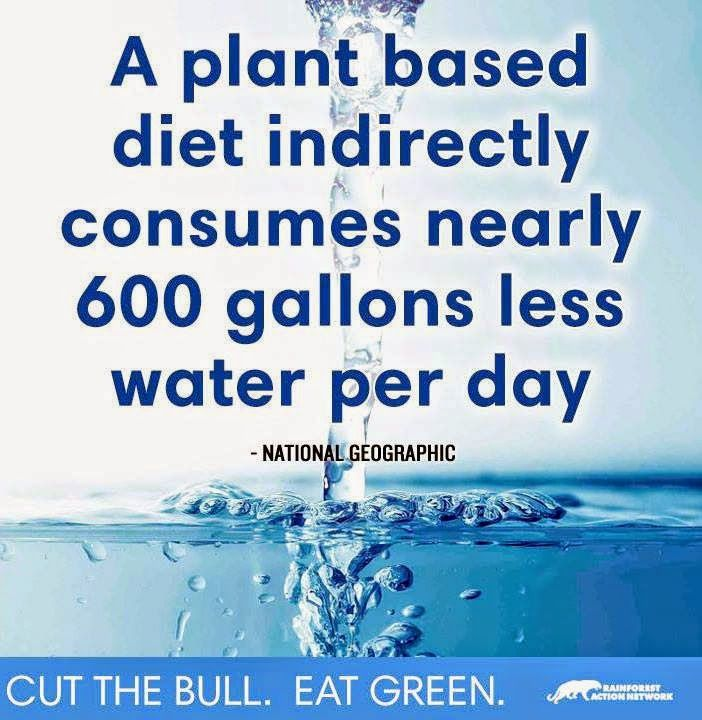 Go Plant Based! Go Green, go vegan! Save the animals. Change. Evolve. Do the…