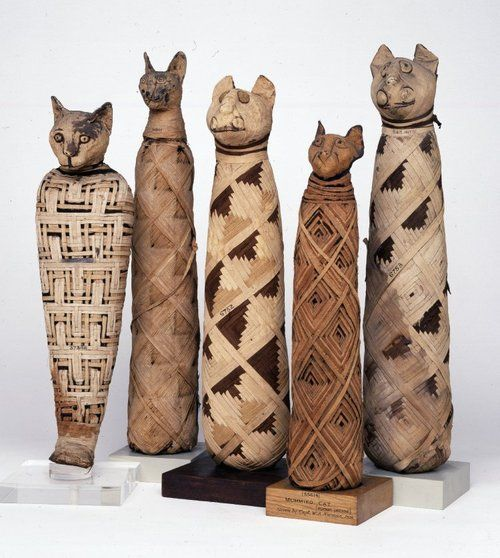 In Ancient Egypt, many animals were thought to be the embodiment of certain gods and goddesses; cats were believed to represent the goddess Bastet. Consequently, they were raised in and around temples devoted to Bastet. When they died, they were mummified and buried in huge cemeteries, often in large communal graves.