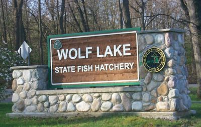 25 best ideas about fish hatchery on pinterest for Wolf lake fishing
