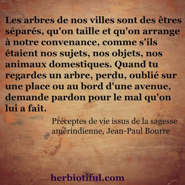 63 Best Appareil Materiel Photo Images On Pinterest: Poeme Sur La Sagesse WS31