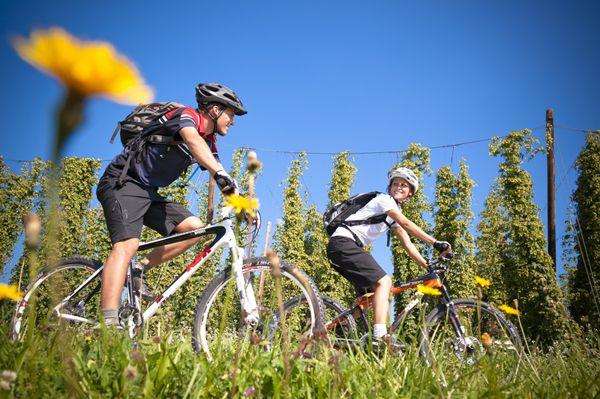 Den #Weitblick beim #Mountainbiken im #Mühlviertel genießen. Weitere Informationen zu #Mountainbikeurlaub im Mühlviertel in #Österreich unter www.muehlviertel.at/mountainbike - ©Oberösterreich Tourismus/Erber