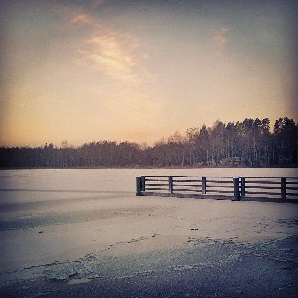 Taking a morning walk on a frozen pond