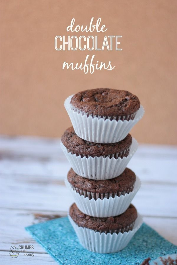 Double Chocolate Muffins | Crumbs and Chaos