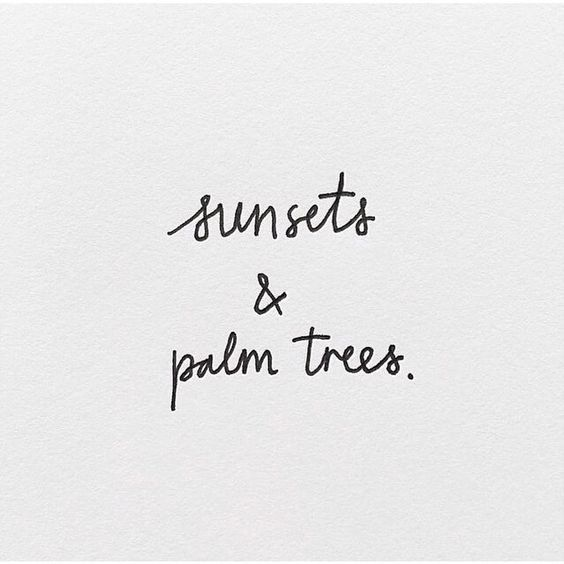 sunsets & palm trees | summer quote