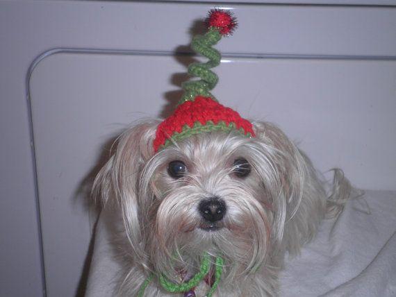 Ayudante de Santa perro o gato sombreros Crocheted Christmas Elf Whoville inspiraron moda o Cindy Lou que traje