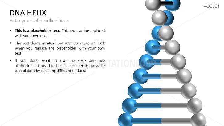 Cadena de ADN con dos hélices | PresentationLoad