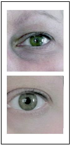 My Favorite product Ever (The Best Eye Cream I've Ever Used)- only available directly from the company, click to learn more