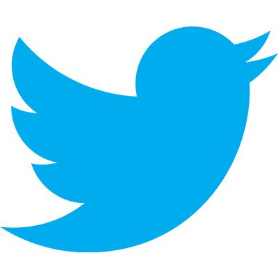 Are you curious to know the hidden message behind TWITTER LOGO #twitter #dhlogofacts #logodesign
