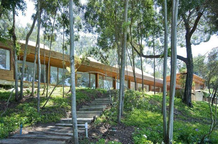 maison en bois moderne dans la forêt avec de grandes fenêtres panoramiques