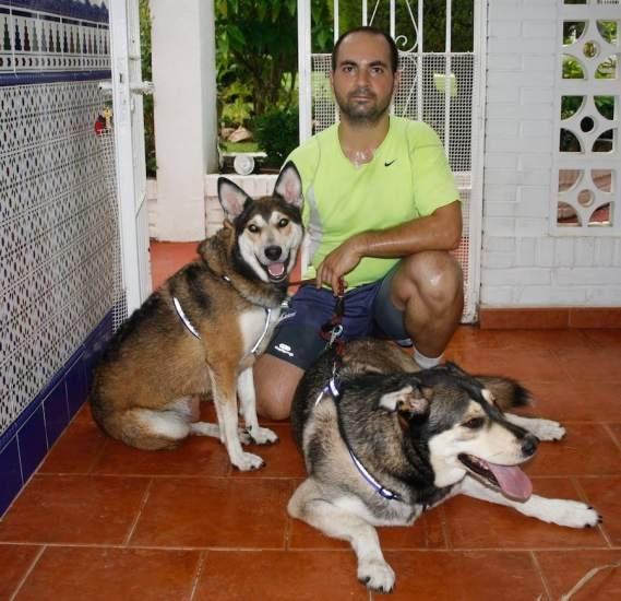 is dos perros, el grande es un macho que se llama Marley, es un cruce de nórdico con no sabemos qué, y la pequeña es una perra que se llama Maya, es un cruce entre husky y pastor alemán. Son una alegría y mis compañeros inseparables cuando salgo a hacer deporte y cuando voy de excursión. Los dos son un amor, adorables. (DAVID CASTRO).
