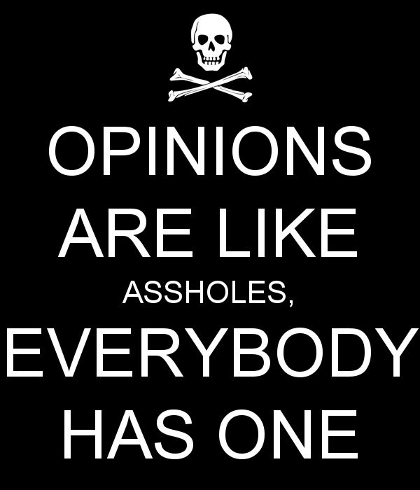 Opinions are like assholes, everybody has one!