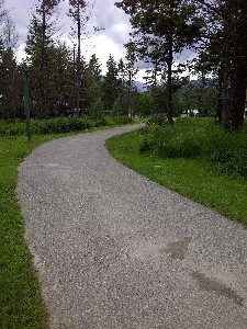 Walking and hiking trails throughout Radium, this one is behind Rundlestone