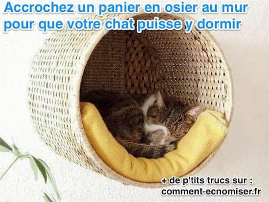 On les adore nos boules de poils, mais elles n'ont pas toujours que des avantages. Voici donc nos 10 astuces qui vont soulager votre vie de propriétaire de chat.  Découvrez l'astuce ici : http://www.comment-economiser.fr/astuce-connaitre-proprietaire-chat.html?utm_content=bufferf93ff&utm_medium=social&utm_source=pinterest.com&utm_campaign=buffer