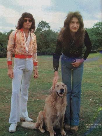 Freddie with John Deacon and a dog - I'm unsure to whom it belongs. Freddie always had several cats that he really ADORED to the point where he'd frequently call them almost every day when gone on a tour. I think that's really sweet.