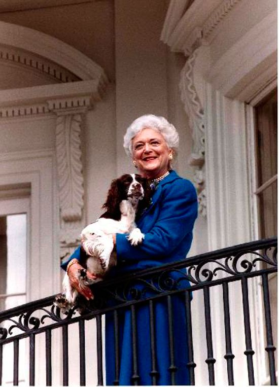 At Home With Presidential Families - Traditional Home® President George H. W. Bush, 1989-1993 First Lady Barbara Bush poses on the Truman Balcony of the White House with her pup Millie in January 1990.  Photograph courtesy of the George Bush Presidential Library