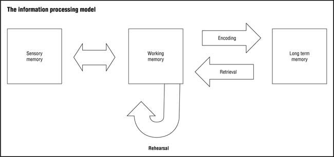 Figure 1 - IPT (Information processing theory) in this case ITM