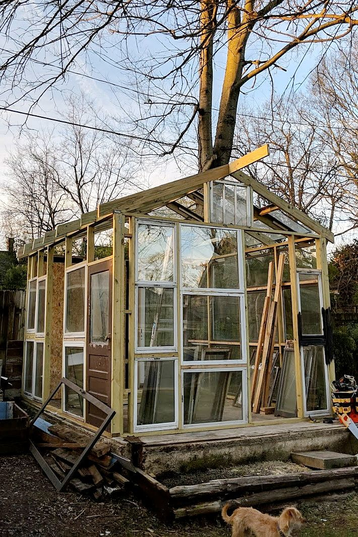 Before And After We Turned Our Old Garage Into A Backyard Greenhouse In 2020 Backyard Greenhouse Greenhouse Build A Greenhouse